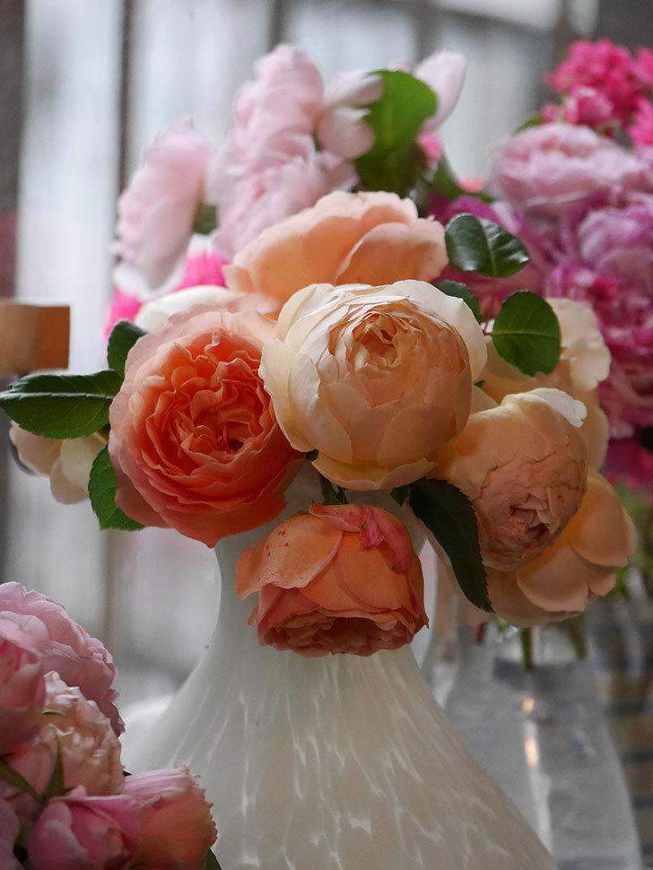 雨予報だったので咲いているバラを切り花にした。2020年-062.jpg