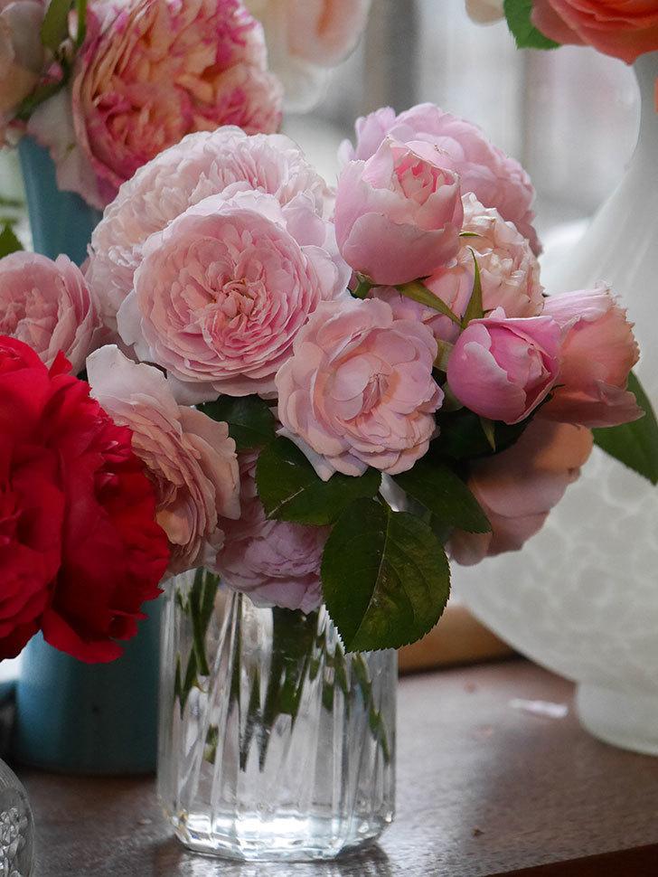 雨予報だったので咲いているバラを切り花にした。2020年-063.jpg