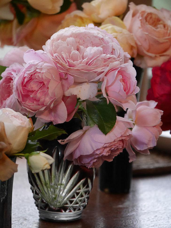 雨予報だったので咲いているバラを切り花にした。2020年-067.jpg