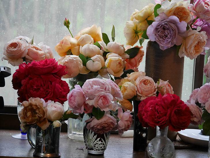 雨予報だったので咲いているバラを切り花にした。2020年-068.jpg