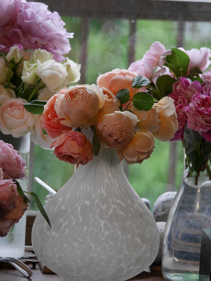雨予報だったので咲いているバラを切り花にした。2020年-071.jpg