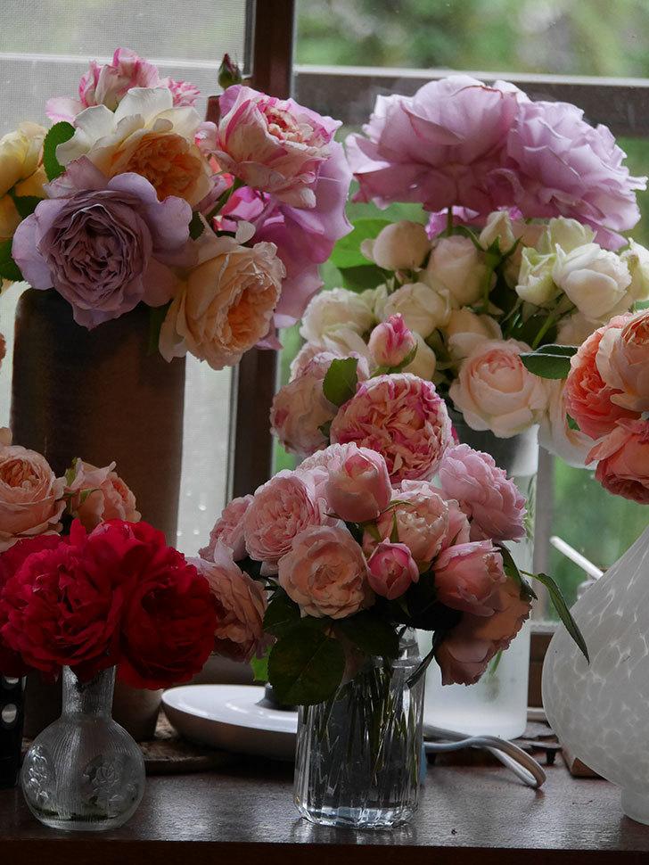雨予報だったので咲いているバラを切り花にした。2020年-072.jpg