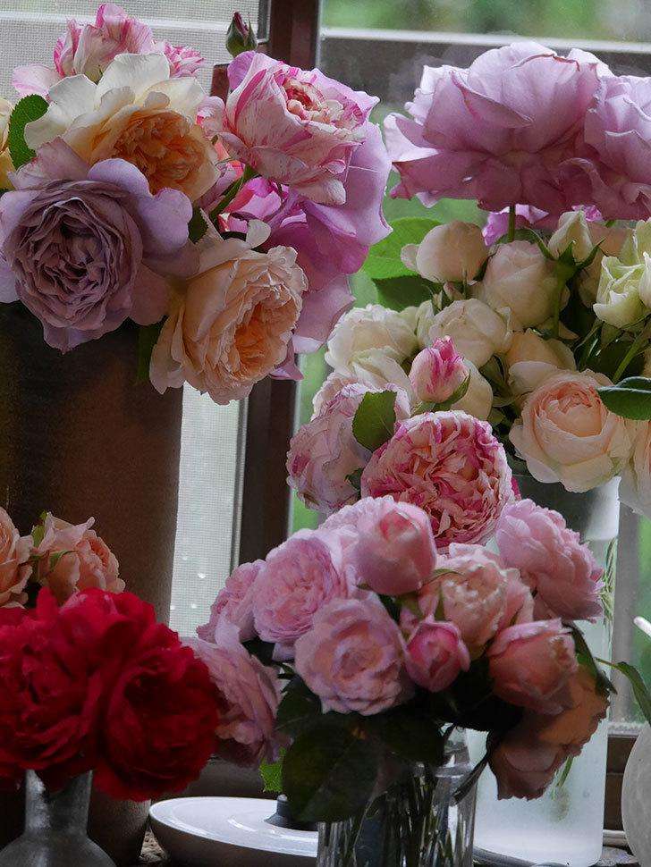 雨予報だったので咲いているバラを切り花にした。2020年-073.jpg