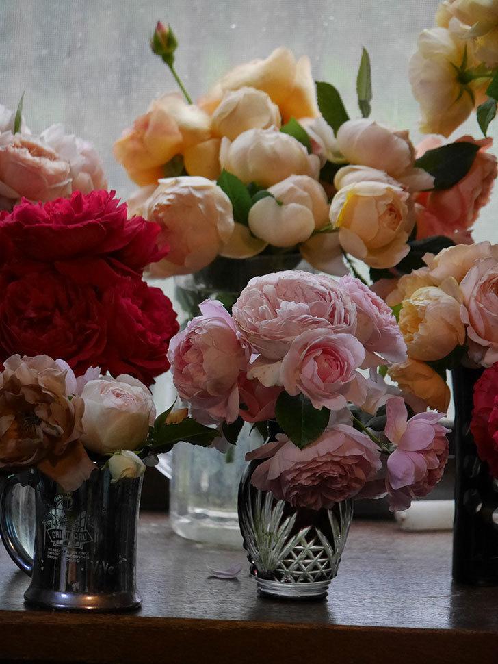 雨予報だったので咲いているバラを切り花にした。2020年-076.jpg