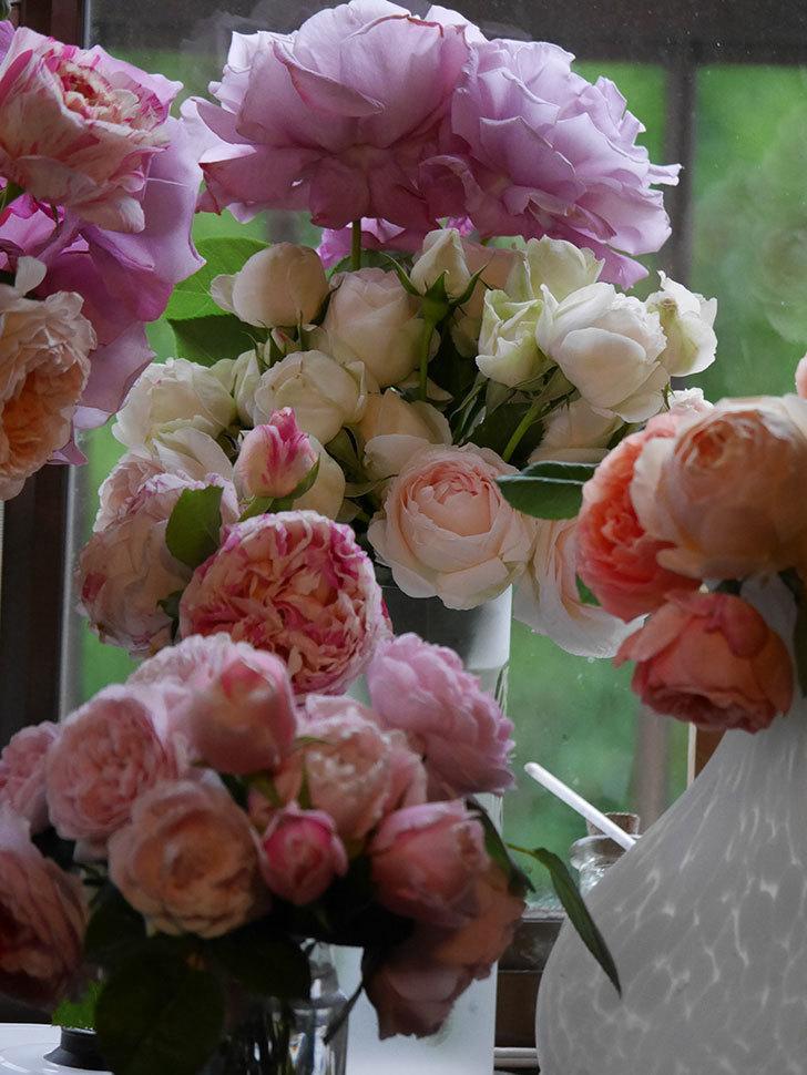 雨予報だったので咲いているバラを切り花にした。2020年-081.jpg