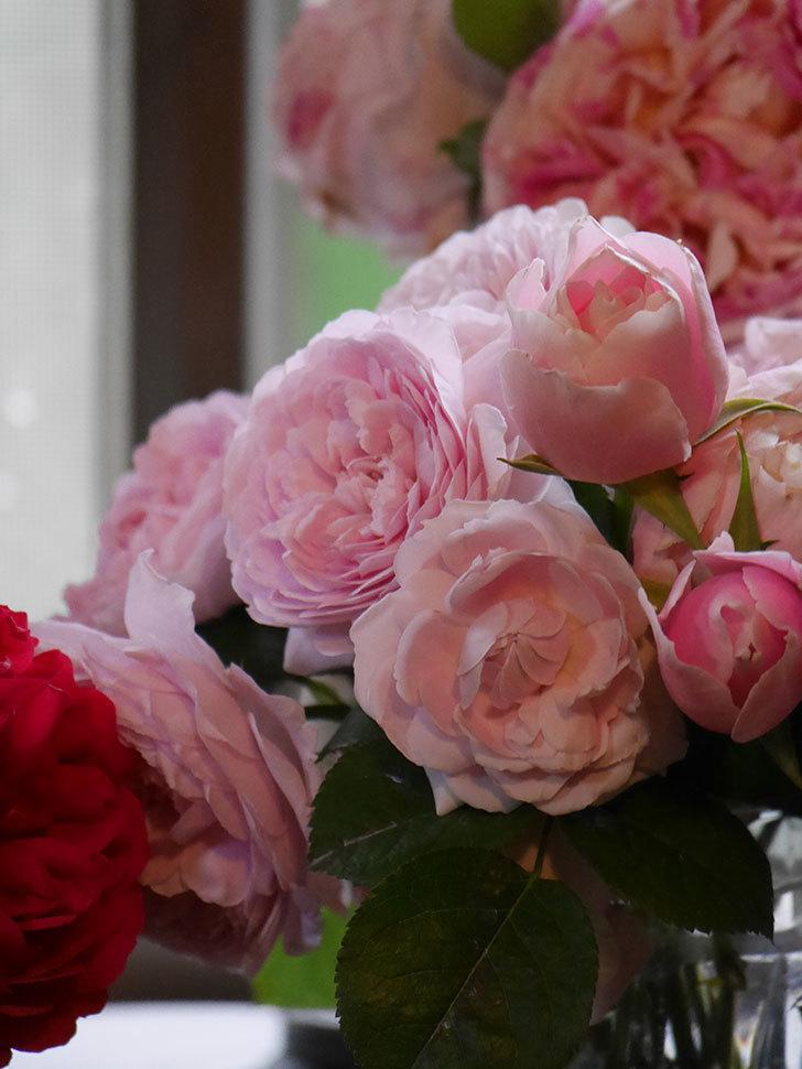 雨予報だったので咲いているバラを切り花にした。2020年-097.jpg
