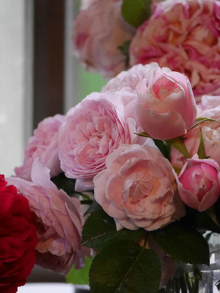 雨予報だったので咲いているバラを切り花にした。2020年-098.jpg