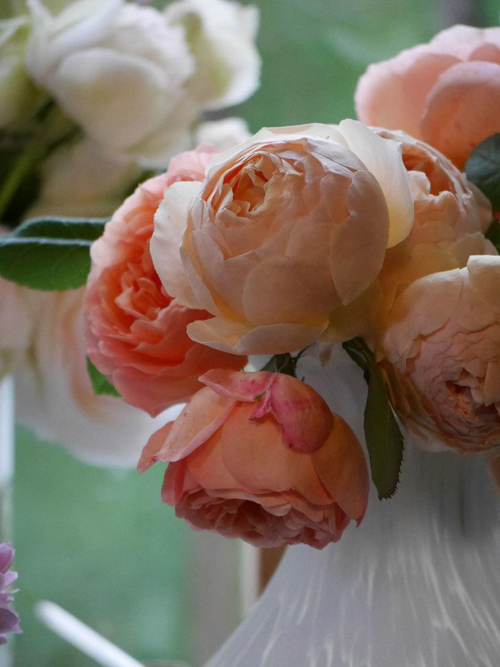 雨予報だったので咲いているバラを切り花にした。2020年-099.jpg