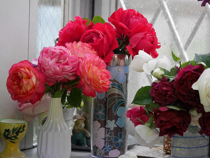 雨予報だったので咲いているバラを切り花にした。2020年-103.jpg