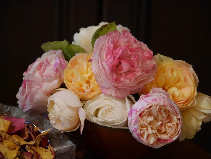雨予報だったので咲いているバラを切り花にした。2020年-105.jpg