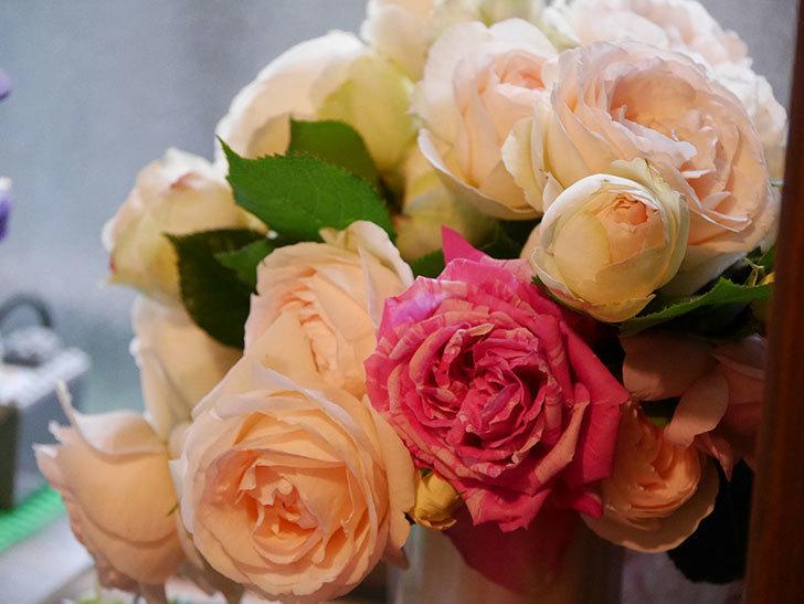 雨予報だったので咲いているバラを切り花にした。2020年-107.jpg