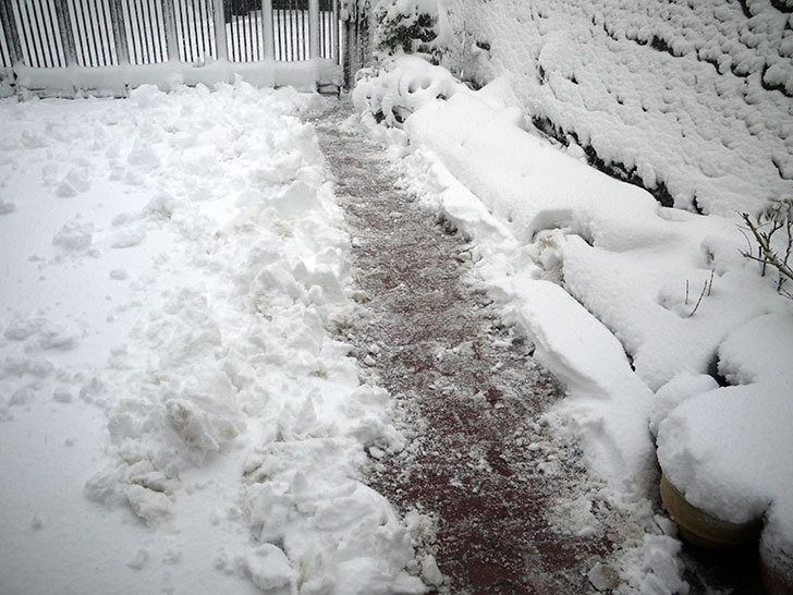 雪が凄くで荷物を配達できなとヤマトから連絡がきた8.jpg