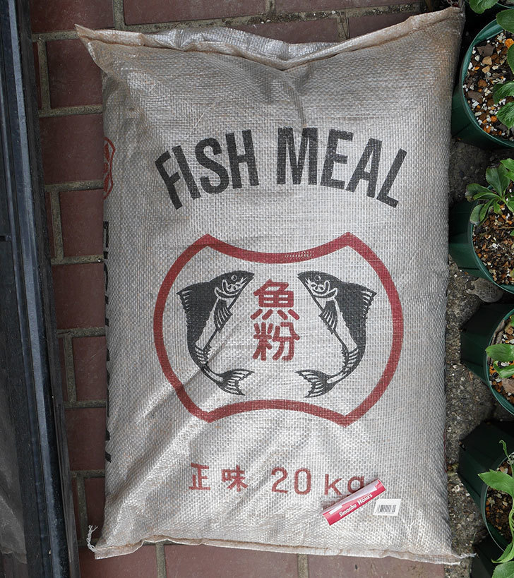 魚粉-20kgをホームズで買って来た1.jpg