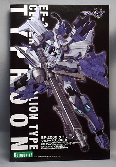 EF-2000-タイフーン-ツェルベルス大隊仕様が来た3.jpg