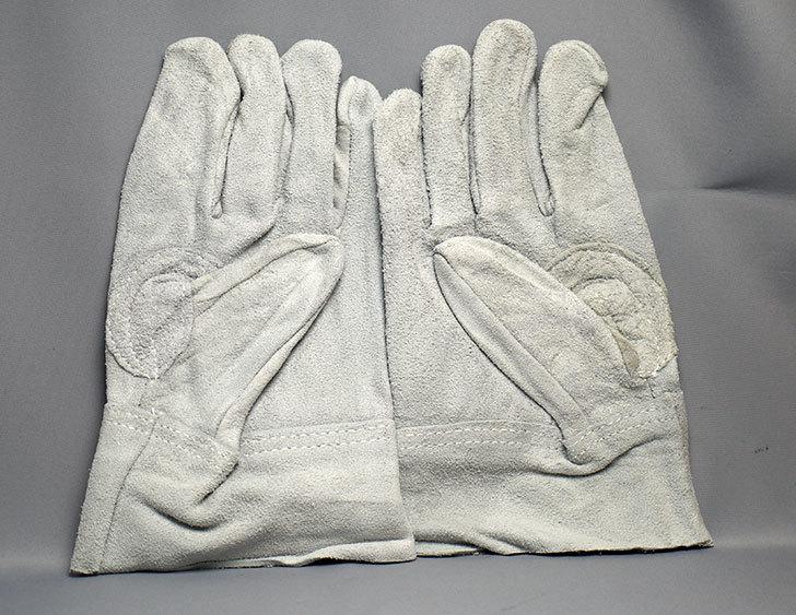 TRUSCO 革手袋普及タイプを買った1.jpg