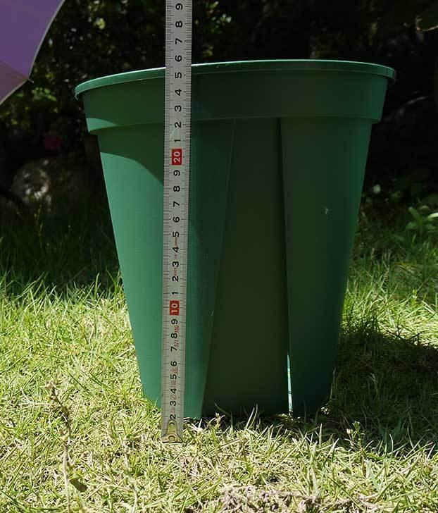EUスリット鉢-EU-24Lモスグリーン(8号深鉢)を楽天で1ケース36個買った4.jpg
