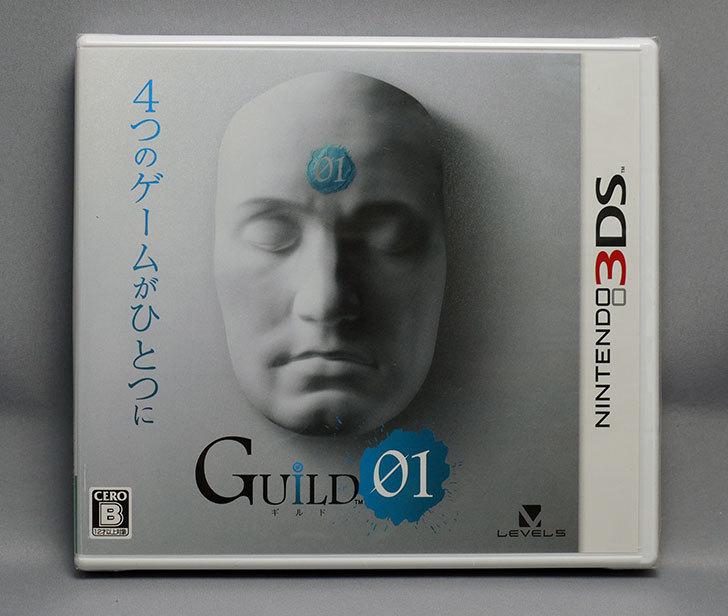 GUILD01-(ギルドゼロワン)を買った1.jpg