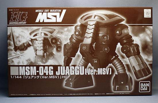 HGUC-1-144-ジュアッグ(Ver.MSV).jpg