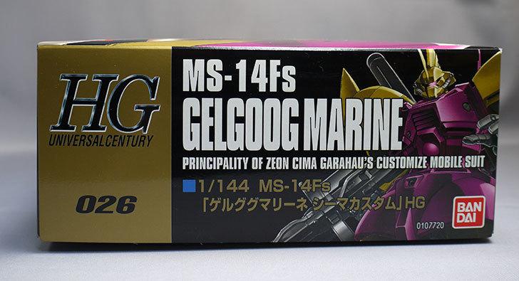 HGUC-1-144-MS-14Fs-シーマ・ガラハウ専用-ゲルググマリーネが届いた4.jpg