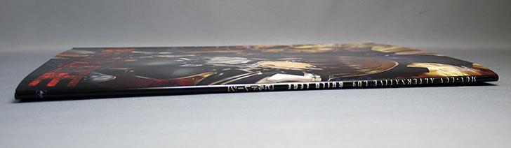 LD9「ビルドレージ」目的で買ったアージュセット2014冬が来た10.jpg