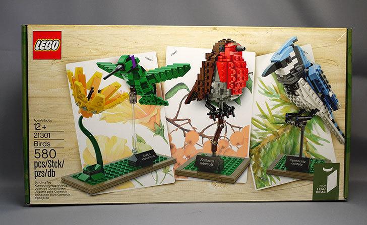 LEGO-21301-世界の鳥-21301をクリブリで買って来た1.jpg