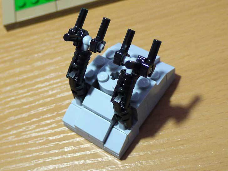 LEGO-21301-世界の鳥-21301を作った1-20.jpg