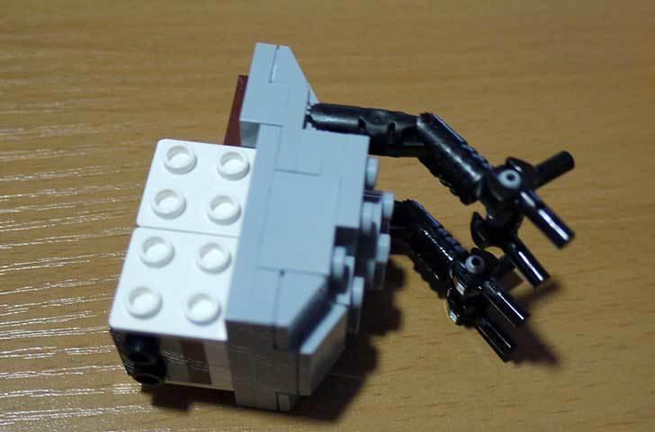 LEGO-21301-世界の鳥-21301を作った1-24.jpg