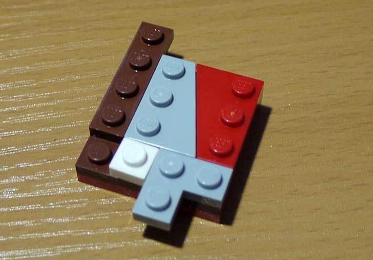 LEGO-21301-世界の鳥-21301を作った1-27.jpg