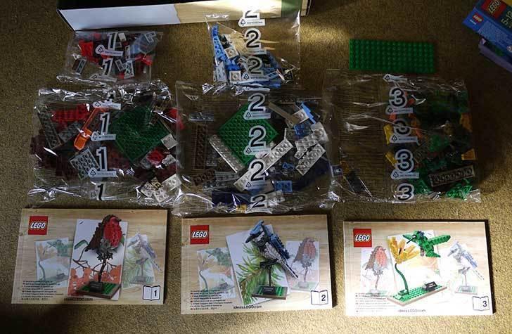 LEGO-21301-世界の鳥-21301を作った1-3.jpg