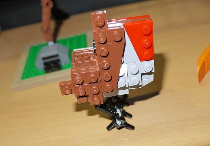 LEGO-21301-世界の鳥-21301を作った1-32.jpg