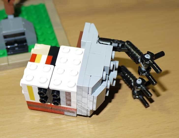LEGO-21301-世界の鳥-21301を作った1-34.jpg