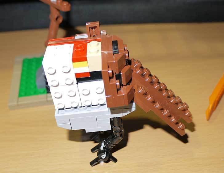 LEGO-21301-世界の鳥-21301を作った1-40.jpg