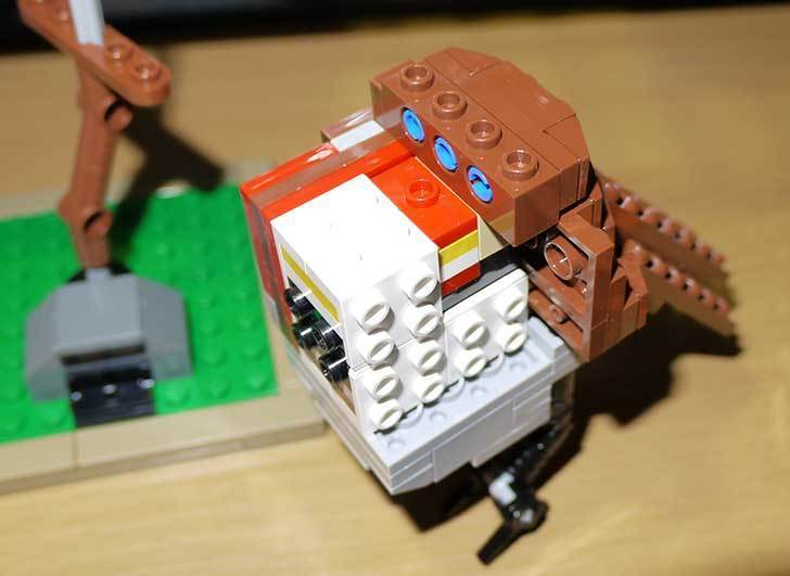 LEGO-21301-世界の鳥-21301を作った1-43.jpg
