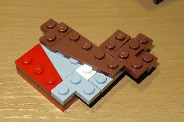 LEGO-21301-世界の鳥-21301を作った1-45.jpg