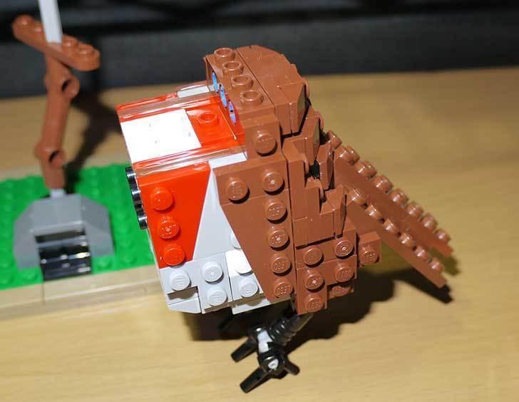 LEGO-21301-世界の鳥-21301を作った1-46.jpg