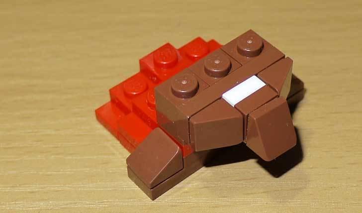 LEGO-21301-世界の鳥-21301を作った1-50.jpg