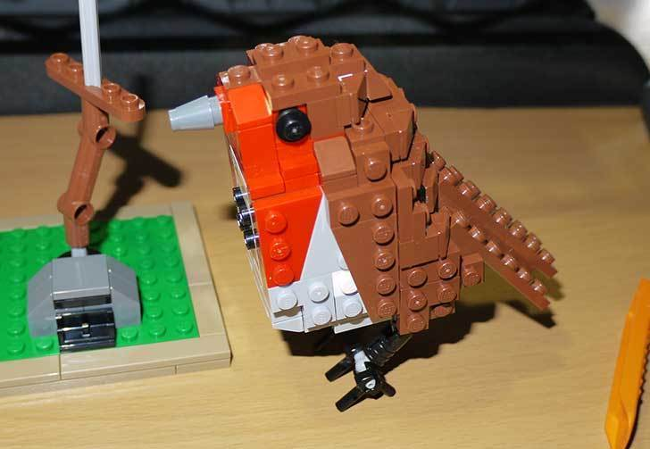 LEGO-21301-世界の鳥-21301を作った1-54.jpg