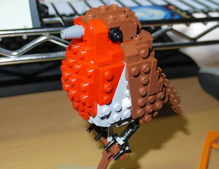 LEGO-21301-世界の鳥-21301を作った1-56.jpg