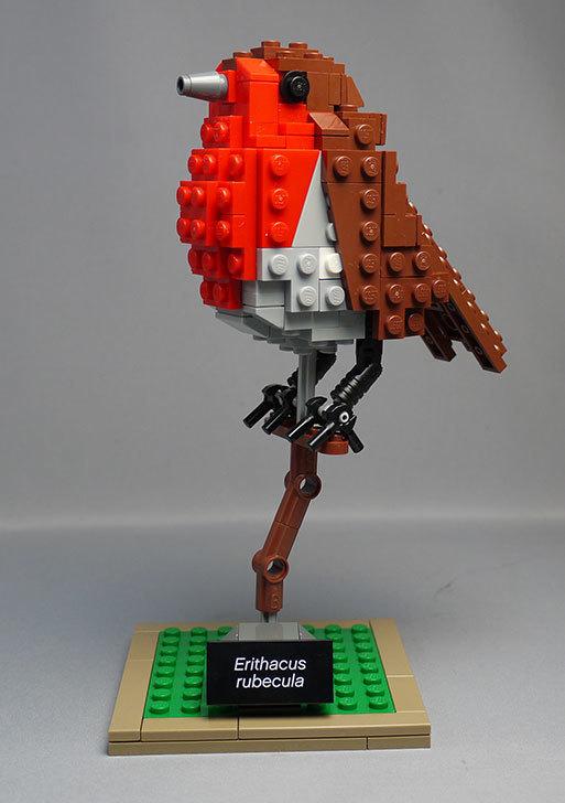 LEGO-21301-世界の鳥-21301を作った1-58.jpg