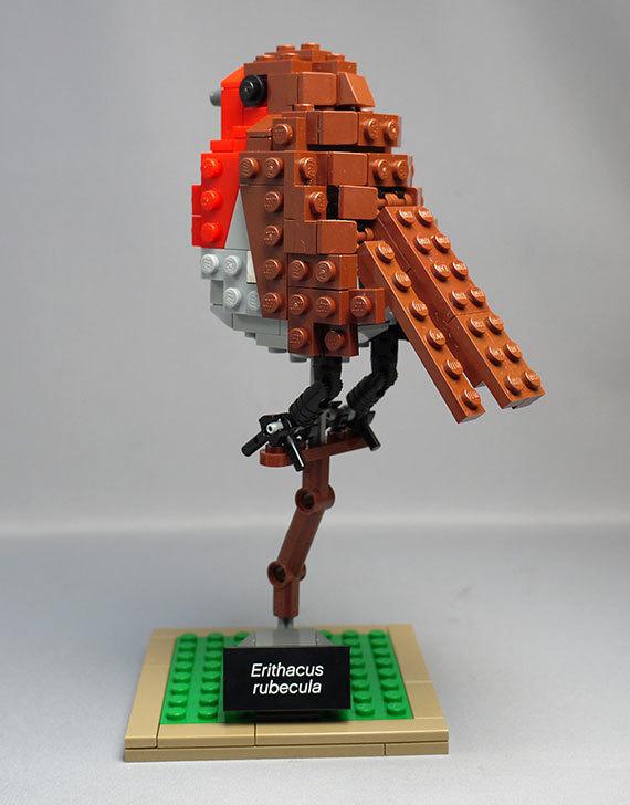 LEGO-21301-世界の鳥-21301を作った1-60.jpg