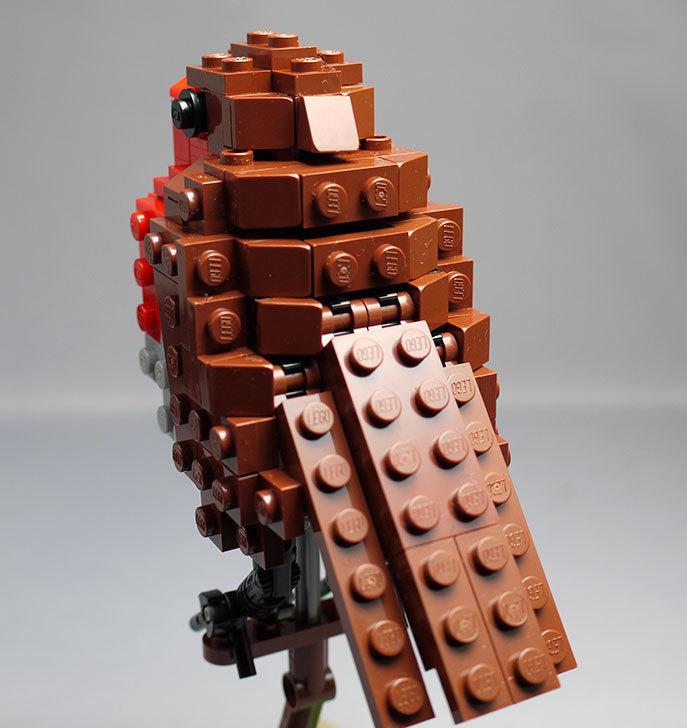 LEGO-21301-世界の鳥-21301を作った1-68.jpg
