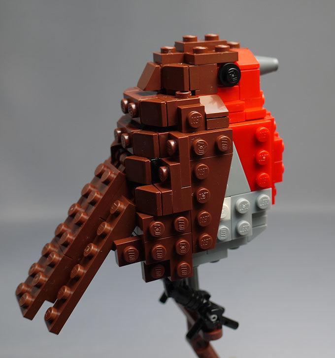 LEGO-21301-世界の鳥-21301を作った1-69.jpg