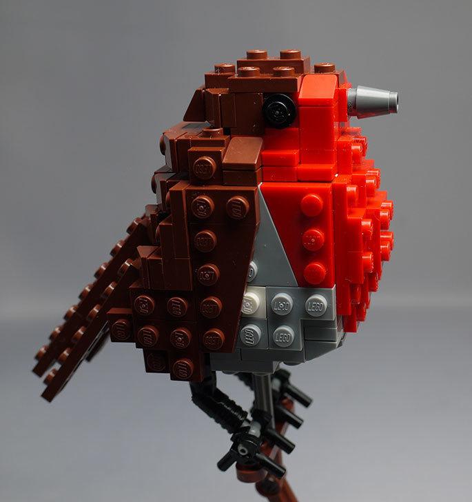 LEGO-21301-世界の鳥-21301を作った1-70.jpg
