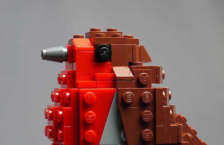 LEGO-21301-世界の鳥-21301を作った1-73.jpg