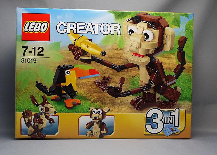 LEGO-31019-クリエイター・モンキー&バードが来た1.jpg