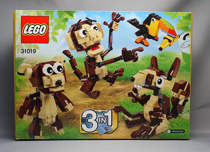 LEGO-31019-クリエイター・モンキー&バードが来た2.jpg