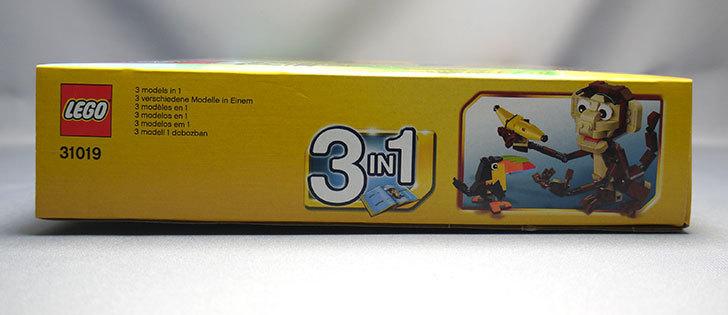 LEGO-31019-クリエイター・モンキー&バードが来た4.jpg