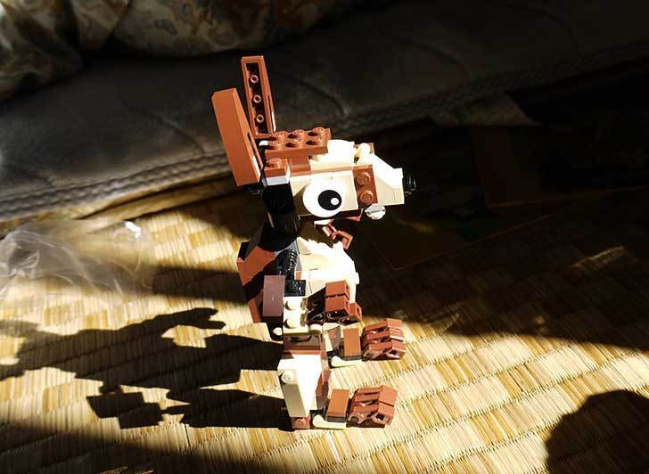 LEGO-31019-クリエイター・モンキー&バードを作った1-13.jpg