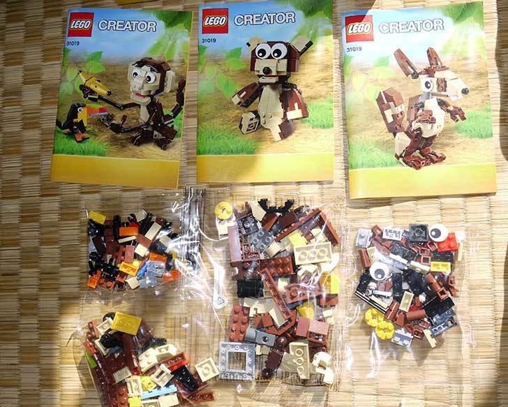 LEGO-31019-クリエイター・モンキー&バードを作った1-2.jpg