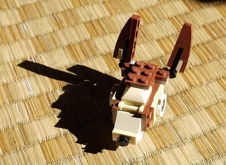 LEGO-31019-クリエイター・モンキー&バードを作った1-6.jpg